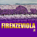 www.firenzeviola.it